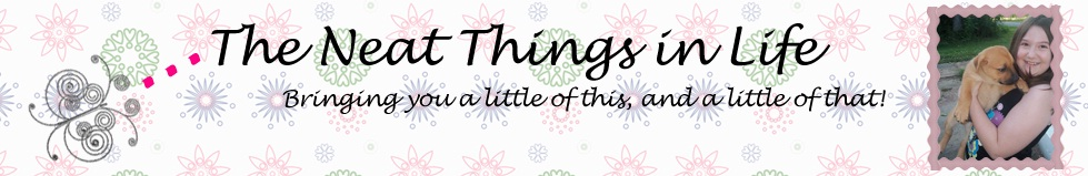 neat things in life banner
