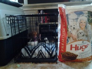 BREW- Hugs Pet Products