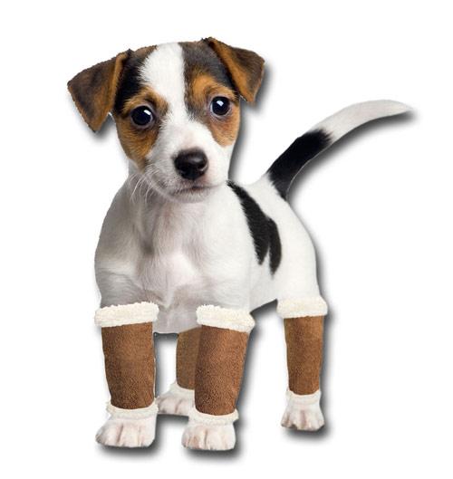pugz leg warmers in use