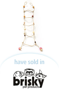 Davison Designed Product Idea: The Critter Ladder