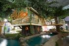 Davy's Treehouse