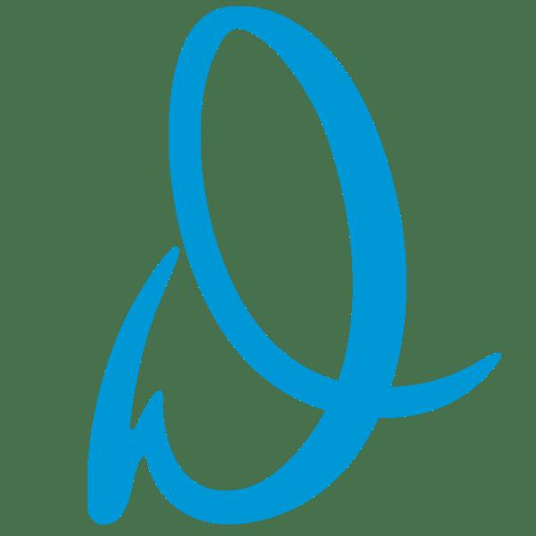 Davison D Logo